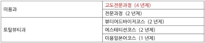 일본미용학교_헐리우드미용전문학교_학원제 헐리우드 페스티벌 (27).JPG