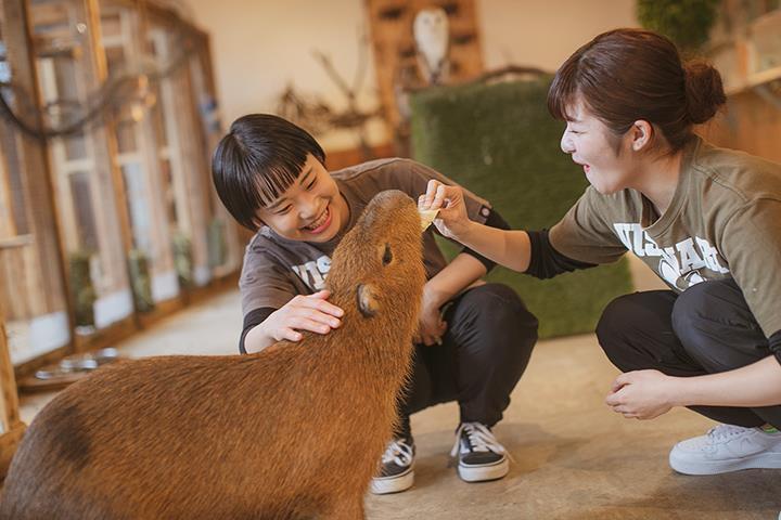 비져너리아츠_일본 펫, 제과제빵 학교 (6).JPG