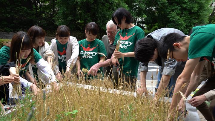 일본제과제빵학교 비져너리아츠 전문학교_밀가루 재배  (1).JPG
