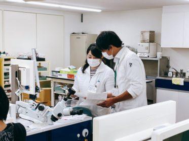일본치기공학교_신도쿄치과기공사학교 (2).png